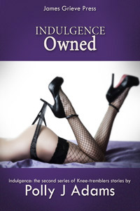 Indulgence 2: Owned by Polly J Adams (sex club, gangbang, group sex, menage, anonymous sex, sex with strangers, sex parties, orgy, gang bang, casual sex, frottage, erotic fiction, explicit erotica, sexy affairs, one night stands)