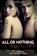 All or Nothing (Winner Takes All 3) (wealthy, bad boy, romantic thriller, rags to riches, mysterious past, romantic suspense, conman, double-crosser, maine romance, new hampshire romance, new england romance, dangerous lover)